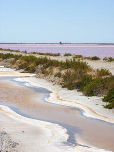 Salins roses d'Aigues Mortes