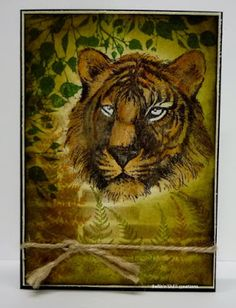 BaRb'n'ShEll Creations-Kaszazz Tiger cards - BaRb Animal Cards, African Animals, Masculine Cards, Handmade Cards, Card Ideas, Shells, Projects To Try, Paper Crafts, Craft Cards