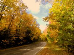 11.22.2015.Forest Home Rd, near Lake Clear outlet, oct 10, 2015.