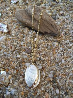 Genuine Pearl Abalone Shell necklace  FREE SHIPPING by Windychimes, $20.00