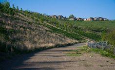 Path below Summerset at Frick Park by Jason Pratt