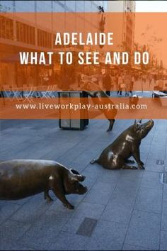 Adelaide | What to see and do in Adelaide | LiveWorkPlay Australia