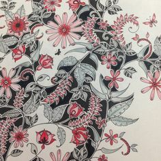 Johanna Basford | Picture by Valeria | Colouring Gallery