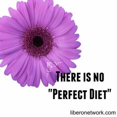 """There is no """"Perfect Diet"""" #recovery #eatingdisorders #edrecovery #anorexia #bulimia http://wwwliberonetwork.com/eatingdisorders/"""
