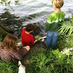 Mama Scout - unschooling posts