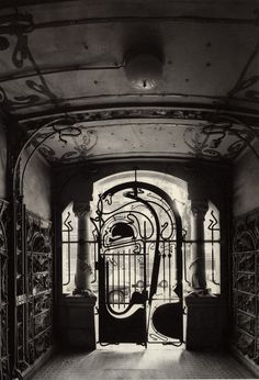 "Gate at Castel Beranger, Paris, by Hector Guimard (inspired by the iconic ""whiplash curves"" of Victor Horta)"