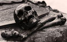skull wallpaper desktop background imagem caveira12