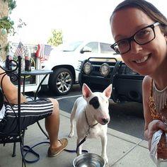 #gordysmarket is #dog friendly on our patio.  #sandveech #makers