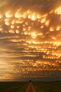 Crazy beautiful mammatus clouds!