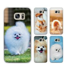 Pomeranian Pet Lovers Protective Phone Cover for Samsung Galaxy S3 S4 S5 Mini S6 S7 S8 Edge Plus  Price: 6.50 & FREE Shipping  #pets #dog #doglovergifts
