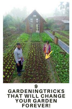 9 AWESOME DIY IDEAS FOR YOUR GARDEN garden ideas, gardening ideas, gardening for beginners, gardening design, gardening tools, gardening hacks, gardening and landscape, gardens