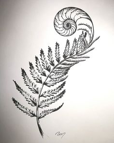 Spirals in nature tend - relationshipgoals Fibonacci Tattoo, Tatouage Fibonacci, Fractal Tattoo, Tattoo Abstract, Flash Tattoos, Sleeve Tattoos, Forearm Tattoos, Mutter Erde Tattoo, Golden Ratio Tattoo