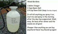 Will have to try this. Hope it is safe...I want to make a vegie garden in a weed choked area of my yard.