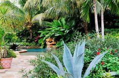 aménagement jardin avec palmiers touche d'exotisme