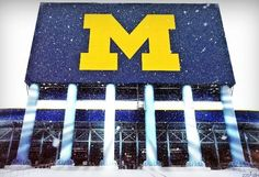 Live from the Big House. Michigan Athletics, Michigan Wolverines Football, Packers Football, University Of Michigan, Michigan Go Blue, Royal Colors, Sports Pictures, Ann Arbor, Chevrolet Logo