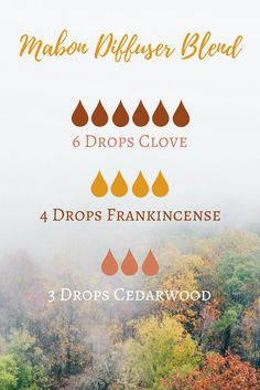 Mabon (Autumn Equinox) Essential Oil Diffuser Blend | The Witch of Lupine Hollow