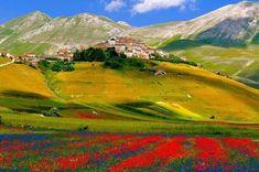 fioritura-castelluccio-2.jpg (1024×679)