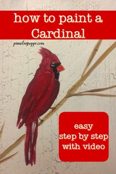 Easy, how to paint a Cardinal in acrylics. Step by step instructions with a free video to show you exactly how to paint these beautiful birds. Great for DIY signs, hand made gifts, canvas paintings and more. #easypainting #cardinals #acrylicpainting