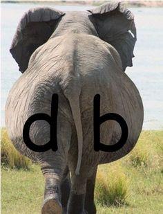 """Om de letters d en b uit elkaar te houden, aangezien de kinderen ze (in groep 3) vaak door elkaar halen/verwisselen. De dikke billen van de olifant. Ook leuk met het liedje; """"ze kunnen zeggen wat ze willen""""."""
