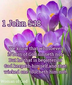 1 John 5:18 KJV