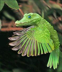 Criatura fantastica
