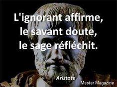 L'ignorant affirme, le savant doute, et le sage réfléchit. French Words, French Quotes, Favorite Quotes, Best Quotes, Life Quotes, Pump It, Einstein, Quote Citation, Positive Attitude