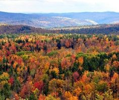 A guide to visiting the state of Vermont, USA.