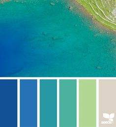 Paper Flora Colour Palletecolor Combinationsturquoise Color Palettescolor Palette Greenocean