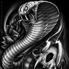 cobra snake tattoo design