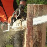 Tree Removal Services Tree Removal Service, Removal Services, In The Tree, Outdoor Power Equipment, Garden Tools, How To Remove, Liberty, Pictures, Yard Tools