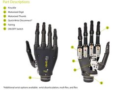 3d printed prosthetic hand   World's First App-Controlled Prosthetic Hand Allows Natural Functions