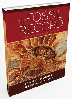 Evolutionists rely on the fossil record for support of their theory, but what does that record really reveal? Find the answer in this book: Days Of Praise, Book Of Remembrance, Institute For Creation Research, 5 Solas, Research Publications, Divine Proportion, Lord Of Hosts, Fear Of The Lord, Educational Programs