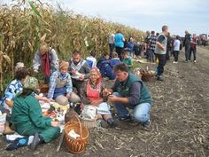 Kukoricafesztivál Tordán