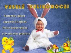 Christmas Decorations, Humor, Czech Republic, Facebook, Humour, Funny Photos, Funny Humor, Comedy, Bohemia