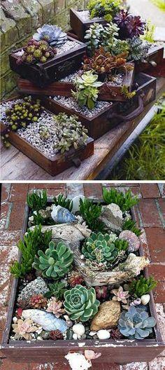 20 Ideas for Creating Amazing Garden Succulent Landscapes – Proud Home Decor