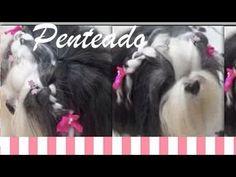 Penteado para sua cadelinha: Trança simples e prática! - YouTube