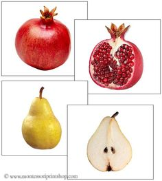 Fruit: Inside and Outside - Montessori language cards, matching and classifying for Montessori toddlers
