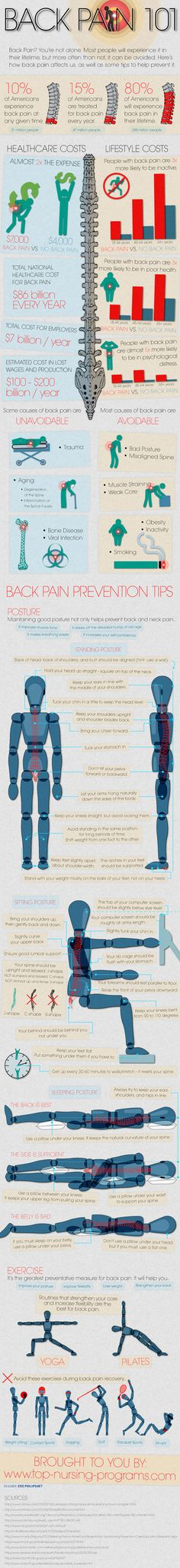 Back Pain 101 (Infographic) theyogablog.com