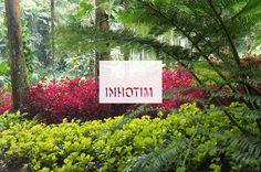 The charm of gardens of the Institute Inhotim. #nature  #yard #green #plants #flowers #casadevalentina