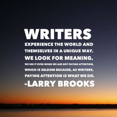 """Writers experience the world and themselves in a unique way..."" - Larry Brooks #quoteoftheday #amwriting #books"
