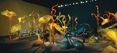 "Dale Chihuly  MILLE FIORI IV, 2004  20 X 20'  ""MILLE FIORI"" APRIL 8 - MAY 1, 2004  MARLBOROUGH GALLERY  NEW YORK, NEW YORK"
