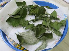 dried leaves for rabbits