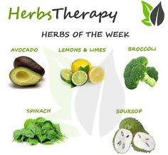 Check out our Herbal Encyclopedia: http://herbs-therapy.com/herbal-dictionary/