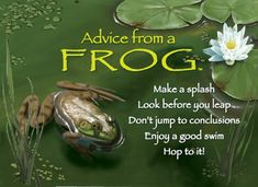 """Wedding Advice from a Frog: """"Don't Jump to Conclusions. Advice Quotes, Life Advice, Good Advice, Wisdom Quotes, Great Quotes, Inspirational Quotes, Motivational, Frog Quotes, Brene Brown Quotes"""