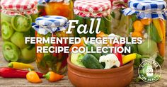 Go beyond sauerkraut with these recipes for lacto-fermenting all your favorite fall vegetables. Vegetable Recipes, Vegetarian Recipes, Fermentation Recipes, Fall Vegetables, Veggies, Best Probiotic, Candida Diet, Fermented Foods, Sauerkraut