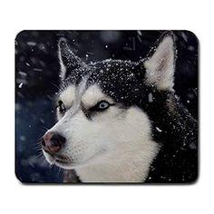 Siberian Husky on Snow Raining Large Rectangular Mousepad Non Slip Quinn Cafe http://www.amazon.com/dp/B00P4ZQGOU/ref=cm_sw_r_pi_dp_U54vub0K7NGGE