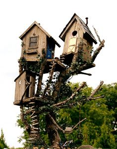 ,Beautiful bird houses!