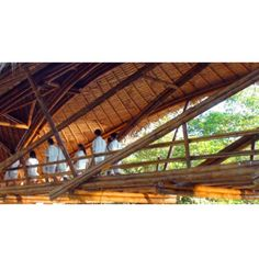 Ponte em bambu. Tailândia. Projeto do arquiteto Mark Emery. #architecture #arquitetura #arte #artes #arts #art #artlover #design #architecturelover #instagood #instacool #instadaily #design #projetocompartilhar #davidguerra #arquiteturadavidguerra #shareproject #bambu #leveza #bamboo #lightness #bambooarchitecture #bamboodesign #bamboobridge