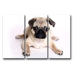 3 Panel Wall Art Painting Pug Prints On Canvas The Picture Animal Pictures Oil For Home Modern Decoration Print Decor For Living Room Animal http://www.amazon.com/dp/B00M93P8TE/ref=cm_sw_r_pi_dp_E8x6tb0WWV9F8
