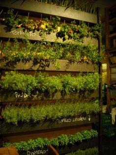 Jardineras verticales (huerto en Cuines de Santa CAterina Barna) tomates, ruda, romero, tomillo etcétera